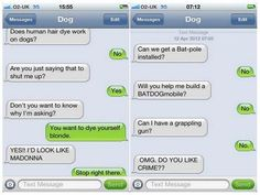 cat texting conversation images | Texts from dog so funny it hurts