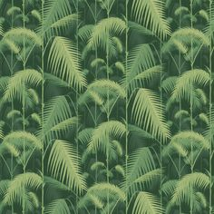Palm Jungle Forest Green wallpaper by Cole & Son Green Wallpaper, Peel And Stick Wallpaper, Downstairs Cloakroom, Downstairs Toilet, Cole And Son, Picture Wall, True Colors, Lush, Plant Leaves