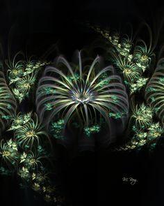 Spider Plants by *M. Berg  http://myberg2.deviantart.com/