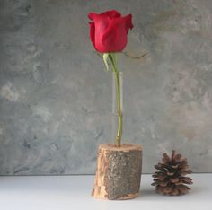 Test tube Vase, rustic flower vase, single flower, natural wood