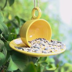 Here Is How To Create Your Own Teacup Bird Feeder. I don't know if I could bring myself to do this, though...its Fiesta!