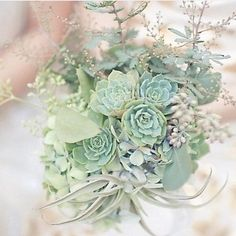 Beautiful succulent bouquet.🌿 (📷 Phot