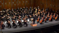 Illinois Council of Orchestras