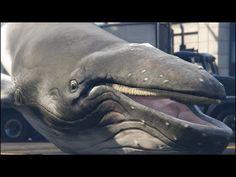 Whale Of A Time #GTAV #LOL #mods #videogames #TVGM