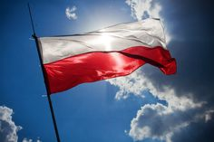 Researching Polish ancestors? Don't miss these six stellar genealogy websites for tracking family in Poland. Poland Facts, Free Photos, Free Images, Poland Flag, Genealogy Websites, Free Genealogy, Genealogy Search, Reggio, Warsaw