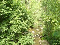Tordai-hasadék: a kedvelt kirándulóhelyen 32 feltárt barlang van. Country Roads, Herbs, Herb, Medicinal Plants