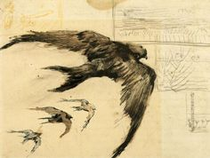 Vincent van Gogh - Four Swifts with Landscape Sketches. 1887. UT PICTURA POESIS: Photo