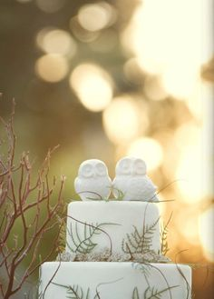 Definitely want owl cake toppers, and would be nice to incorporate a real natural element (maybe rosemary?) without it being too overwhelming.