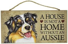 Australian Shepherd colors, markings and patterns allow for a wide range of beautiful combinations.