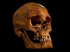 Verdict issued on skeleton found under parking lot: It's King Richard III