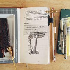 """#midorimornings 11/366 Mushrooms for #cbdrawaday, and dense fudge cake - because #dessertforbreakfast, always."""
