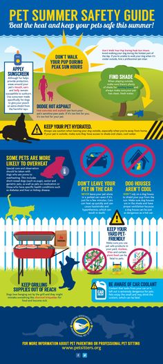 With summer on the horizon and temperatures on the rise, weather conditions can become potentially hazardous for pets. In an effort to help increase awareness about the importance of summer safety, the National Association of Professional Pet Sitters (NAPPS), a nonprofit trade association dedicated to promoting the welfare of animals, created a summer safety guide with valuable tips and best practices for protecting pets during the warm summer months.