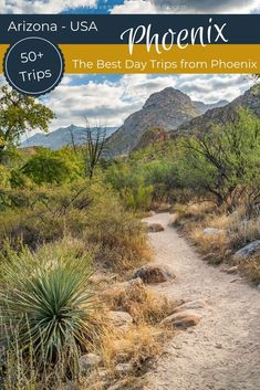 Looking for a day trip from Phoenix that is between 1 to 4 hours away? Phoenix is the perfect central hub for a long list of Arizona day trips and I've got more than 50 of them for you to choose from! Visiting Arizona and take a day trips from Phoenix. This list of the best climbing, hiking day trips from Phoenix has something for everyone. #phoenix #daytrips #arizona #southwest Arizona Day Trips, Arizona Travel, Arizona Usa, Cool Places To Visit, Places To Go, Travel Guides, Travel Tips, Budget Travel, Travel Usa