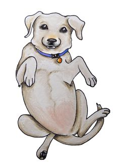 Get more great dog training tips HERE: http://dogtraining-r819fmgp.canitrustthis.com