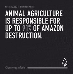 15 Facts That Will Make You Consider Going Vegan Visualised facts about the meat, dairy industries & vegan life, all laid out in black and white. Fact 003: Animal agriculture is responsible for up to 91% of Amazon destruction. Another reason to be #vegan
