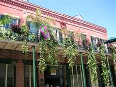 I loved all the coral colored buildings with green trim in the French Market area of NOLA.