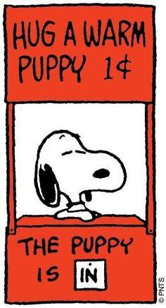 Snoopy & Woodstock too! Snoopy Love, Snoopy And Woodstock, Snoopy Hug, Snoopy Beagle, Peanuts Cartoon, Peanuts Snoopy, Snoopy Cartoon, Schulz Peanuts, Cartoon Pics