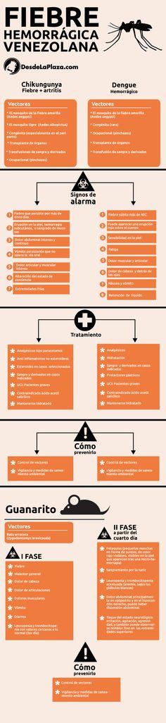 Diferencias y semejanzas del dengue hemorrágico, chikungunya y guanarito