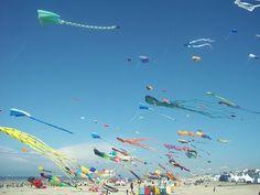 World Kite festival championship at Berck-sur-Mer, Pas-de-Calais, France