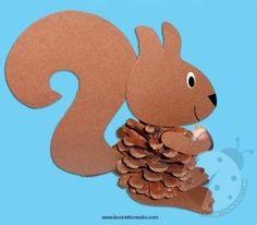 scoiattolo-pigna4