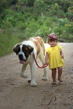 Just taking the dog for a walk...