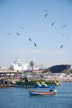 Mazatlan Harbour