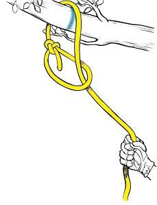 Bowline Knots, - Bowline Knots, Diy Abschnitt, You are in the right place about Cam - Strongest Fishing Knots, Prusik Knot, Bowline Knot, Heart Friendship Bracelets, Decorative Knots, Paracord Knots, Diy Clothes Videos, Napkin Folding, Summer Activities For Kids