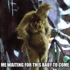 59 Hilarious Pregnancy Memes That Any Parent-to-Be Can Appreciate # pregnancy Humor 59 Hilarious Pregnancy Memes That Any Parent-to-Be Can Appreciate - Grinch, Funny Pregnancy Memes, Pregnant Meme Funny, Pregnancy Information, First Time Moms, Mom Humor, Parent Humor, Nurse Humour, Baby Sleep