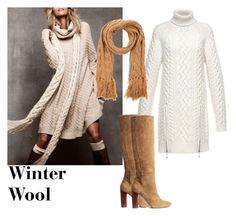 Winter Wool by sibaru on Polyvore featuring Alexander Wang, H&M and Twin-Set