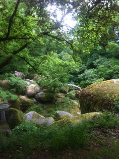 Huelgoat et sa forêt légendaire   Finistère Bretagne, France