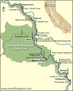 The Giants Humboldt County And State Parks On Pinterest