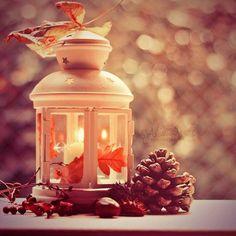 Autumn Fairy~ - Autumn Blessings