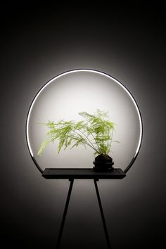 design - au 34 halo planter with a special LED light to enhance growth