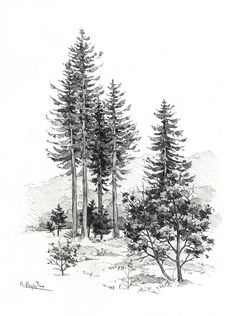 Scenery by Ania Przybylko on ArtStation. Tree Drawings Pencil, Landscape Pencil Drawings, Landscape Sketch, Ink Pen Drawings, Realistic Drawings, Art Drawings Sketches, Landscape Art, Drawing Scenery, Nature Drawing