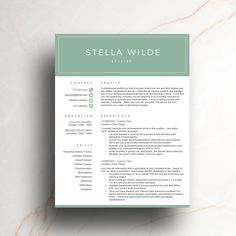 Creative Resume Template For Ms Word  Modern Cv  Page Resume