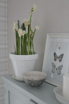 Villaa ja vaniljaa Paradise Garden, Interior Styling, Planter Pots, Sweet Home, Villa, Decoration, Spring, Photos, Inspiration