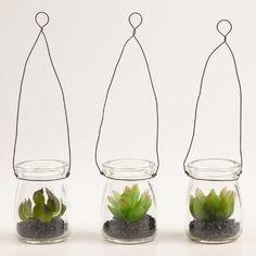 World Market Mini Succulent Hanging Jars Knock-off – Casa Watkins Living - Modern