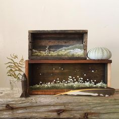 Wonderful Miniature Paper Art in Wooden Boxes It is in Maine, on the West coast of the U.S, that the artist Allison May Kiphuth draws her inspiration. Her work made of folded paper is presented as dioramas and represents various animals and natural. Shadow Box Kunst, Shadow Box Art, Art Altéré, Colossal Art, Found Art, Antique Boxes, Assemblage Art, Medium Art, Watercolor Illustration
