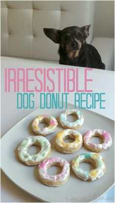 Homemade Dog Food Irresistible Dog Donuts by Irrisistible pets for landeelu dot com roundup - Make these fun healthy homemade dog treat recipes for your fur baby! They give us so much love, they deserve it. Puppy Treats, Diy Dog Treats, Homemade Dog Treats, Healthy Dog Treats, Dog Biscuit Recipes, Dog Treat Recipes, Dog Food Recipes, Food Dog, Dog Cookies