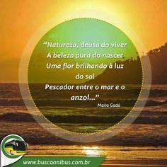 Planeje suas viagens com o www.buscaonibus.com.br
