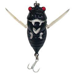 Google Image Result for http://blog.fishingtackleshop.com.au//wp-content/uploads/2012/04/winged-cicada-Black.jpg