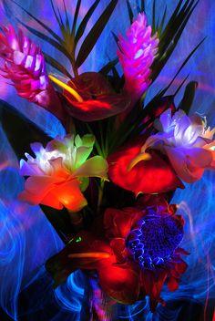 light painted tropical bouquet