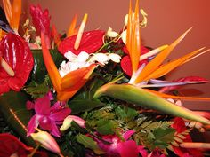 5 Non-Traditional Funeral Flowers: http://blog.avasflowers.net/5-non-traditional-funeral-flowers