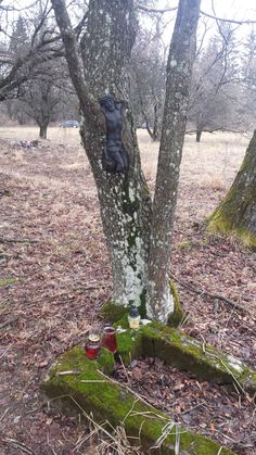 Cmentarz w Starym Łupkowie Poland, Memories, Memoirs, Souvenirs, Remember This