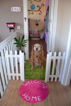 It's amazing what a 7 dollar piece of sweet picket fencing can do for a kid's room. Of course, I'm a bit partial because this is my step daughter's with our sweet dog!  Alex Pheneger