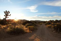 Mohave Desert - my baby Cameron was born here!