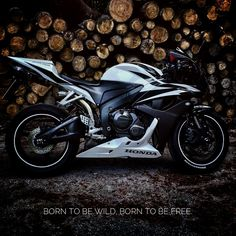 This beast cannot be tamed. This beast cannot be locked in a cage.  IG: erdo.vo  #motorcycle #bikelife #cbr600rr
