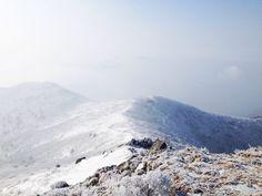 #Frozen #Korea