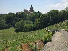 Mukava eväshetki upeissa maisemissa! Kiva patikointireitti Morgesista Château de Vufflensin luokse.