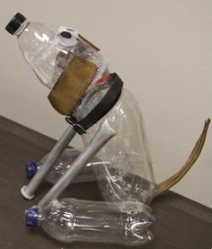 plastic bottle pup by MHS student small.JPG